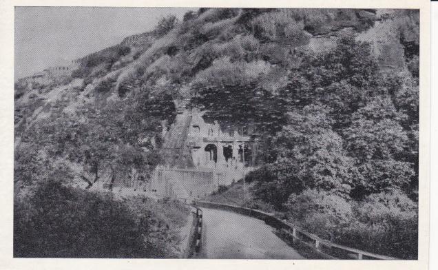 Gwalior Jain Caves 1